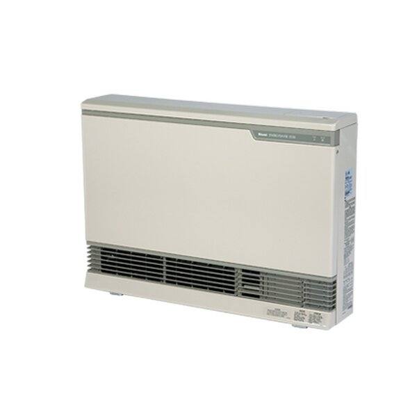 Direct Vent 117 Watt Wall Insert Natural Gas Fan Heater by Rinnai