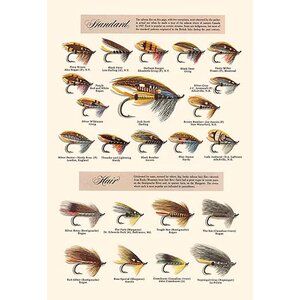 'Fly-Fishing Lures: Standard and Hair' Graphic Art by Buyenlarge