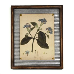 'Flower' Framed Graphic Art Print by Lark Manor