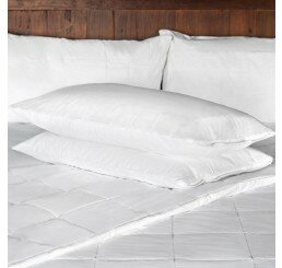 Pillow Protector (Set of 2) By Smartsilk