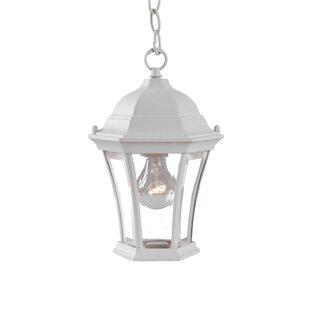 Comparison Francesca Lane 1-Light Outdoor Hanging Lantern By Alcott Hill