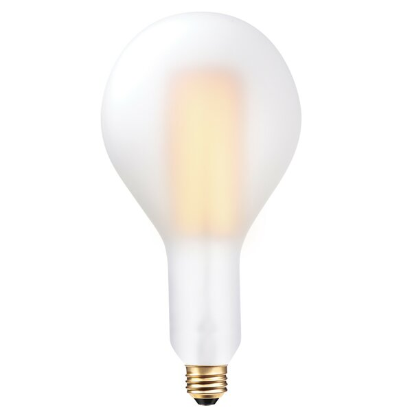 60W Frosted E26 Medium Incandescent Light Bulb by Globe Electric Company