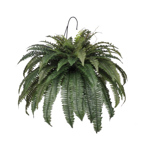Faux Fern Hanging Foliage Plant in Planter by Bay Isle Home