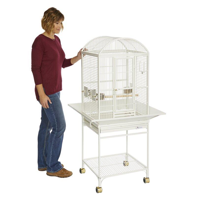 Avian Adventures Nina Dometop Bird Cage Reviews Wayfair