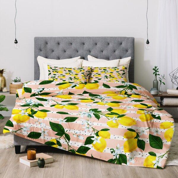 Marta Barragan Camarasa 3 Piece Comforter Set