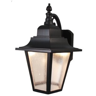 Reviews Flannigan 1-Light Outdoor Wall Lantern By Charlton Home