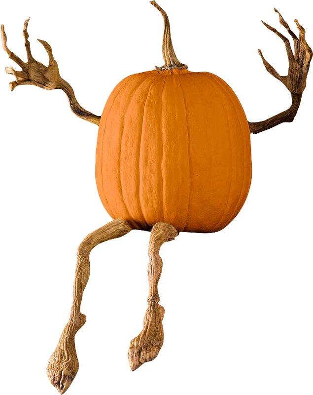 Plow Amp Hearth Pumpkin Vine Arms And Legs Amp Reviews Wayfair