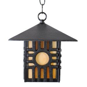 Americana 1-Light Outdoor Hanging Lantern