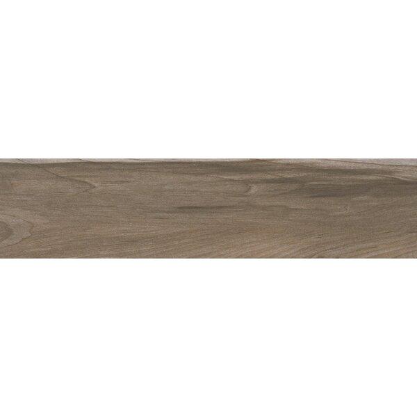 Carolina 6 x 24 Ceramic Wood Look/Field Tile in Beige by MSI