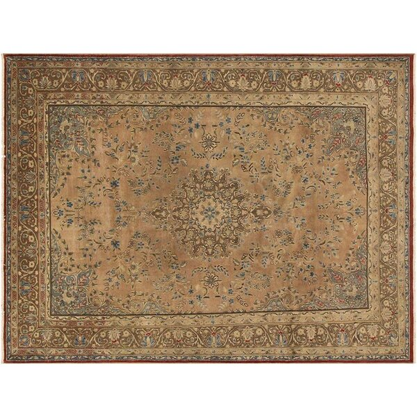 Barkhampstead Hand-Knotted Wool Tan Area Rug by Bloomsbury Market