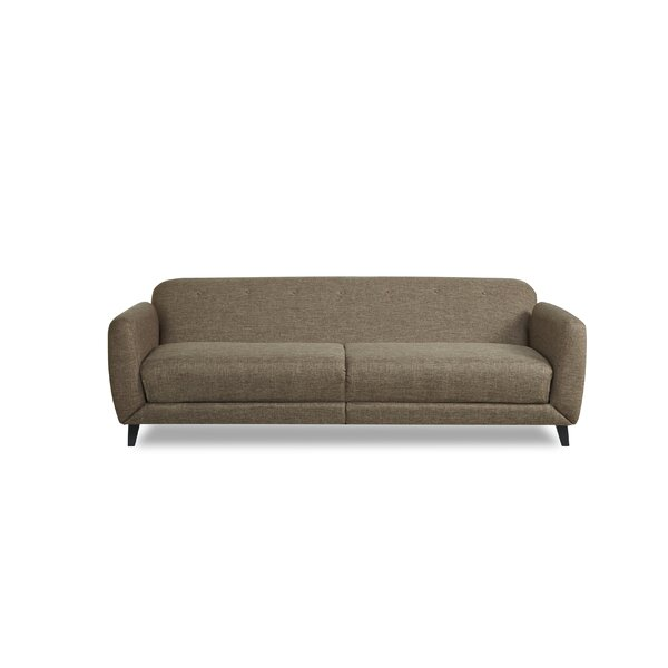 Procyon Sleeper Sofa by Mercury Row