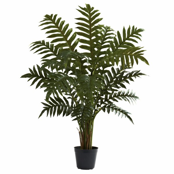 Evergreen Floor Plant in Pot by Nearly Natural