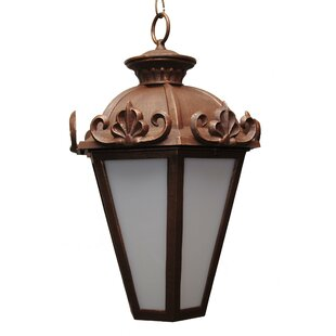 Reviews Petrey 3-Light Outdoor Hanging Lantern By Alcott Hill