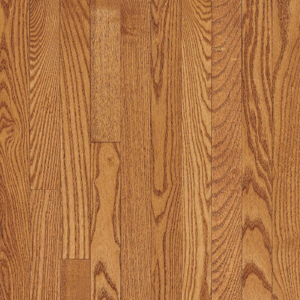 Manchester 3.25 Solid Red Oak Hardwood Flooring in Honey by Bruce Flooring