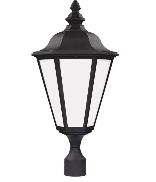 Eakins 1-Light Lantern Head by Darby Home Co