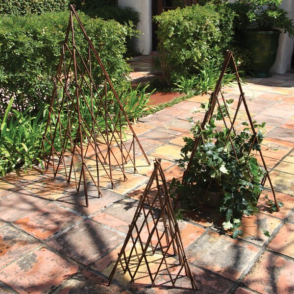 Natural Pyramid Trellis (Set of 4) by Birch Lane™