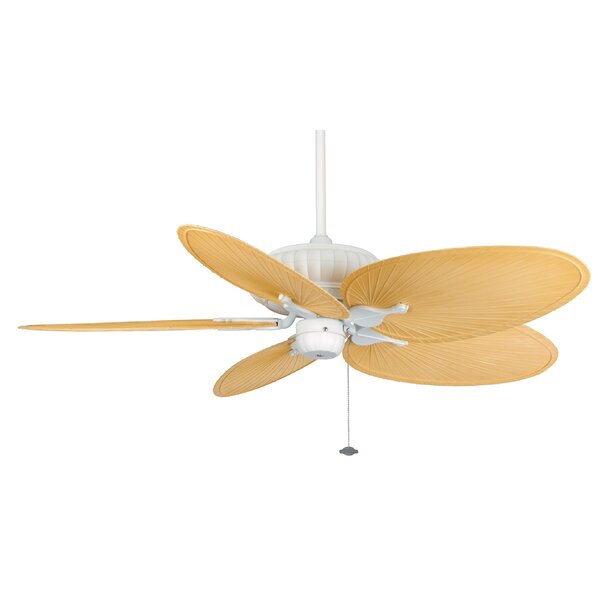 15 Belleria 5 Blade Ceiling Fan by Fanimation