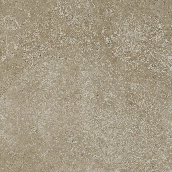 Kent 18 W x 18 Porcelain Field Tile in Pale Beige by Parvatile