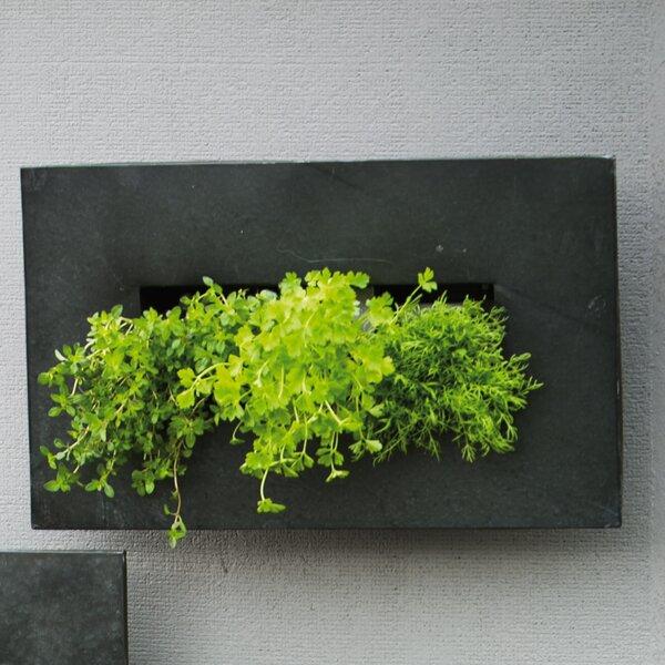 Sharleen 3 Pocket Metal Wall Planter by Evergreen Enterprises, Inc