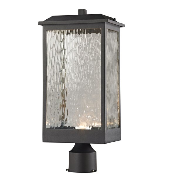 Alyn Outdoor 1-Light LED Lantern Head by Darby Home Co