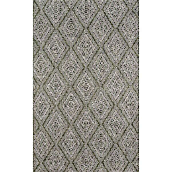 Lake Palace Geometric Green/Gray Area Rug