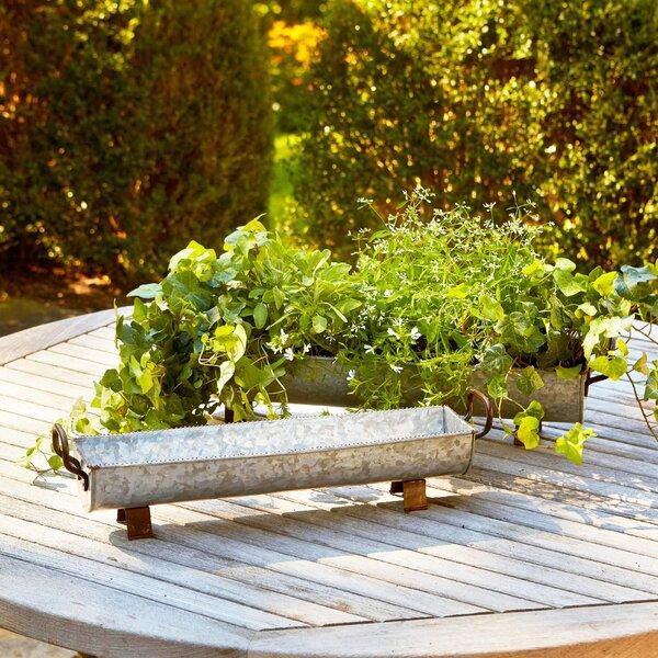 Water Trough 2-Piece Zinc Pot Planter Set by Birch Lane™