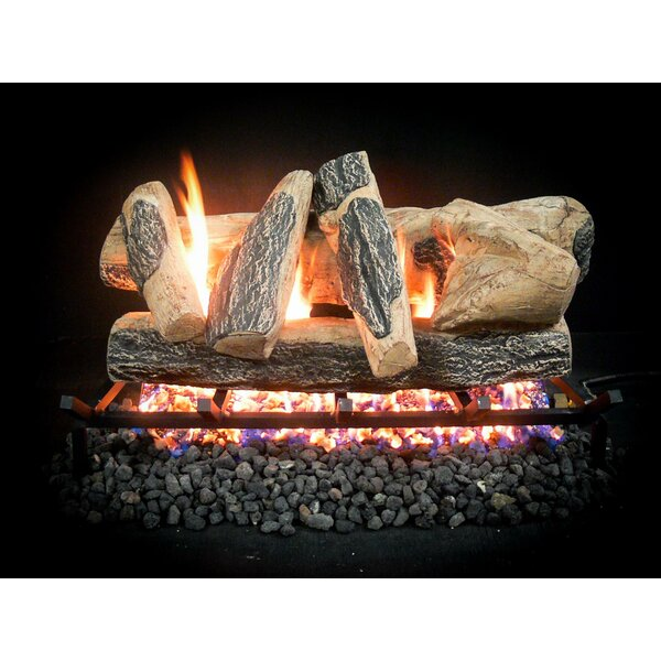 Complete Match Light Rainier Natural Gas Log Kit by Dreffco