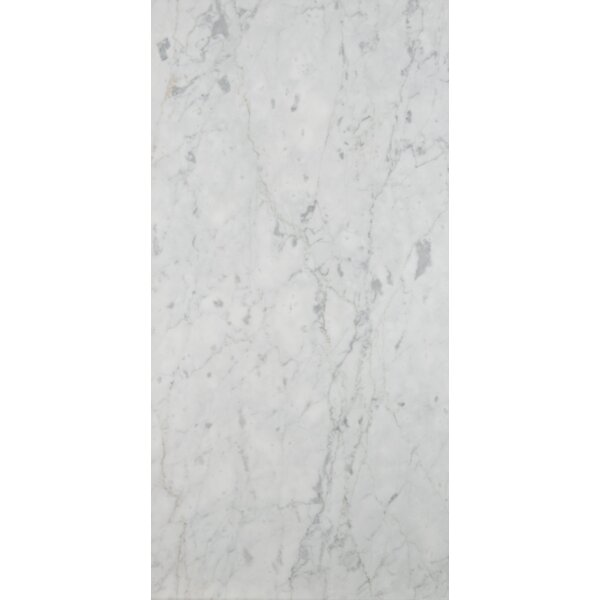 Marble 12 x 24 Field Tile in Bianco Gioia Honed by Emser Tile