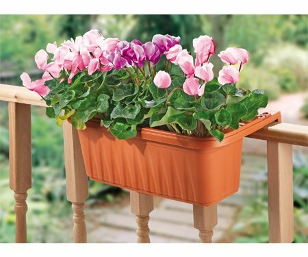 Adjustable Rail Planter by Apollo Exports International Inc.