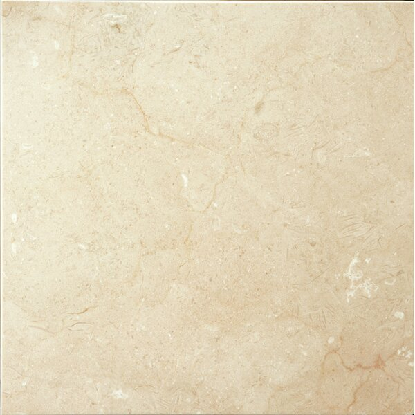 Marble 12 x 12 Field Tile in Marfil Plus Honed by Emser Tile