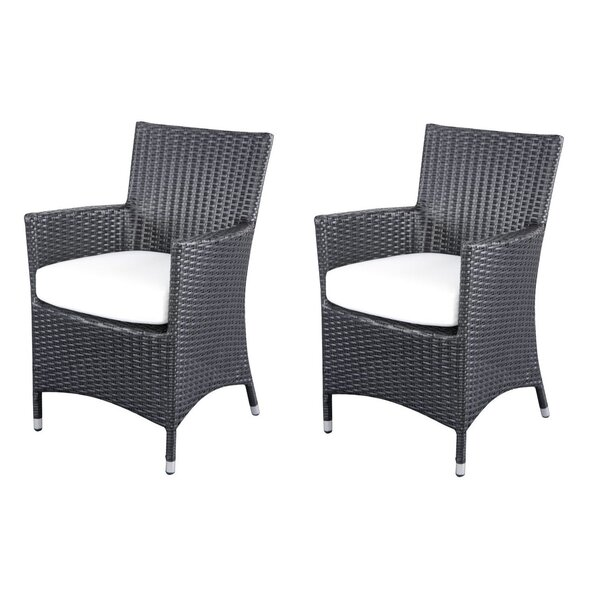 Riverland Patio Dining Chair with Cushion (Set of 2) by Breakwater Bay