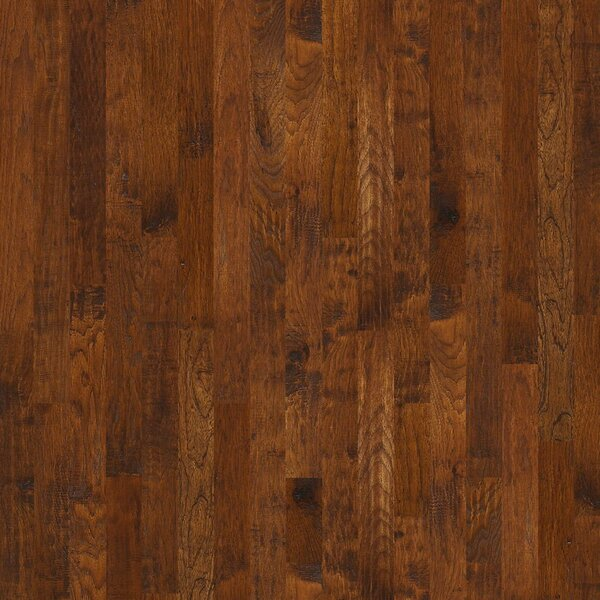 Zellwood 3-1/4 Solid Hickory Hardwood Flooring in Bridgeport by Shaw Floors