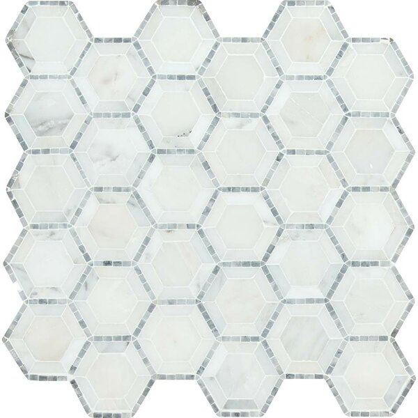 Telaio Hexagon Honed 2 x 2 Marble Mosaic Tile in White by MSI
