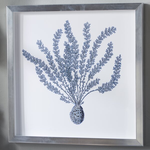 Indigo Coral Shadow Box II by Birch Lane™