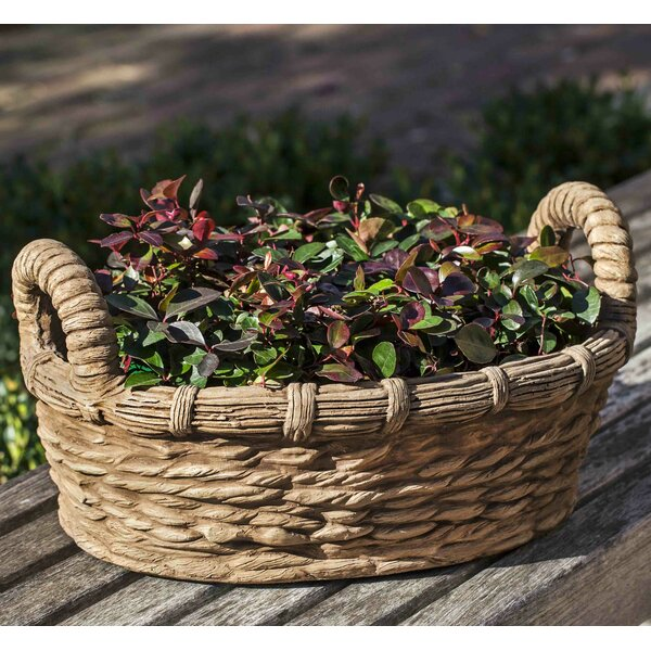 Provencal Basket Cast Stone Pot Planter by Campania International