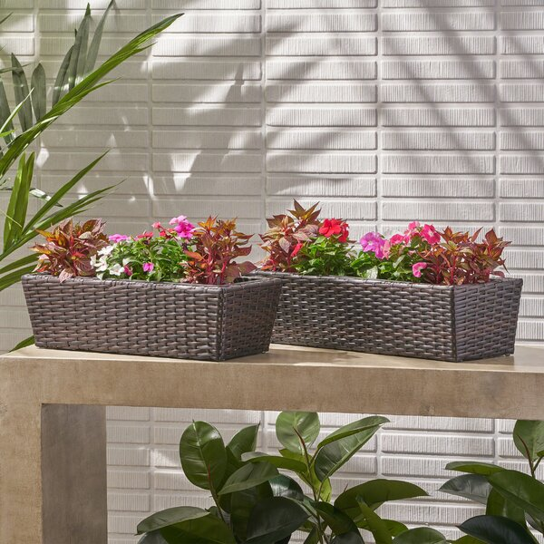 Elias 2-Piece Wicker Planter Box Set by Charlton Home