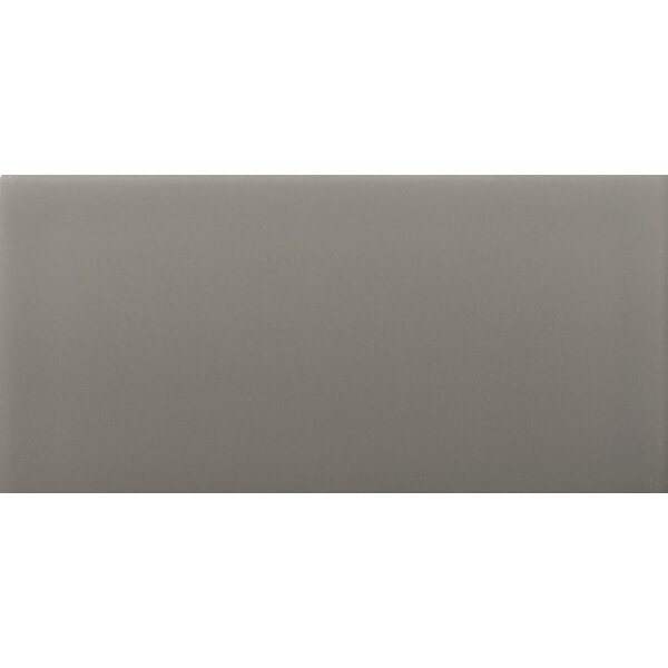 Choice 3 x 6 Ceramic Subway Tile in Glossy Taupe by Emser Tile
