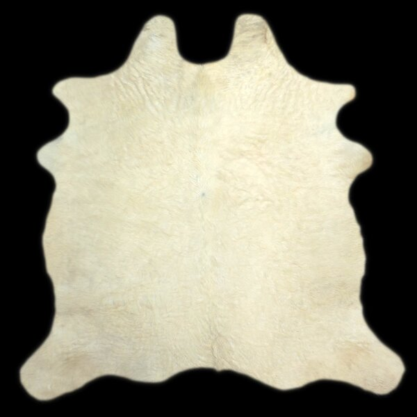 One-of-a-Kind Colebrook Long Hair Hand-Woven Cowhide White Area Rug by Foundry Select