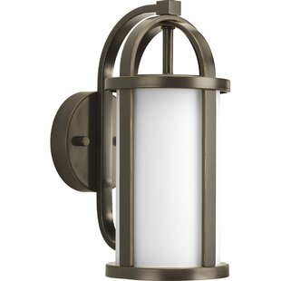 Triplehorn 1-Light Medium Wall Lantern By Alcott Hill Outdoor Lighting