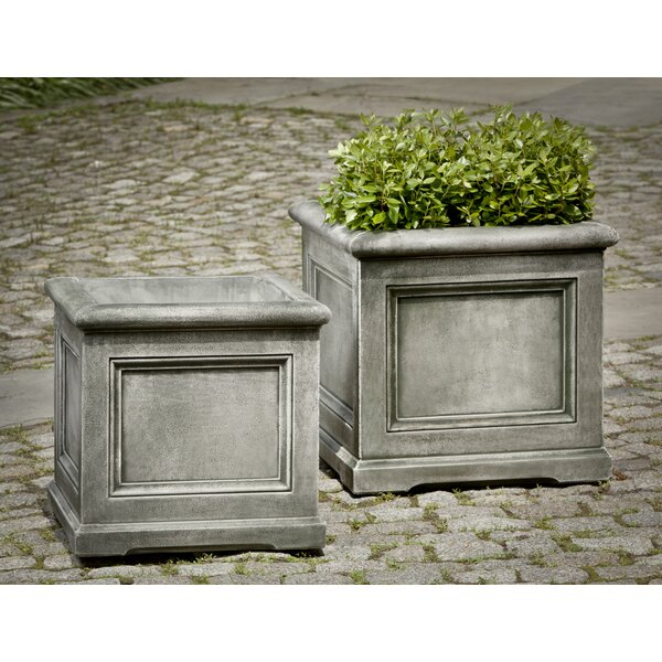 Matha Cast Stone Planter Box by Darby Home Co