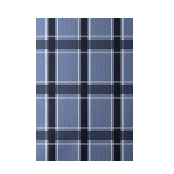 Plaid Hand-Woven Light Blue Indoor/Outdoor Area Rug