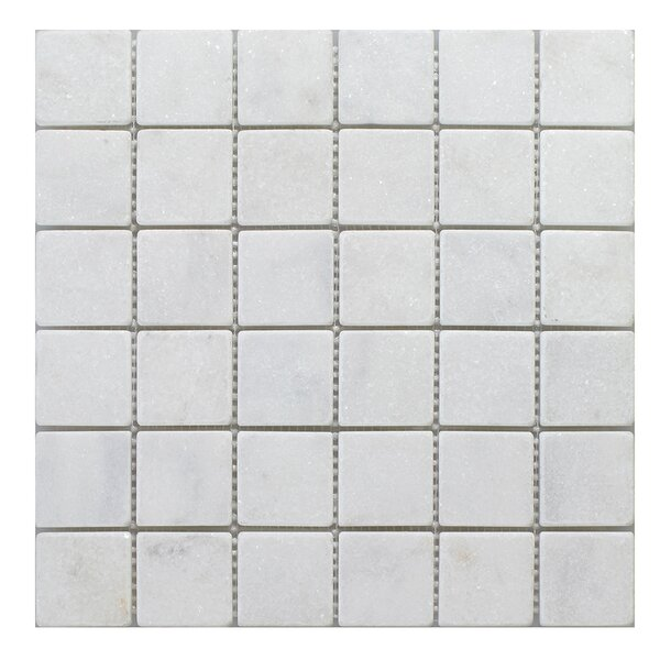 Milas 2 x 2 Marble Mosaic Tile in White by Seven Seas
