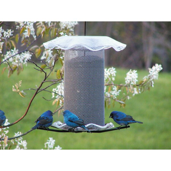 3 Quart Forever Nyjer/Thistle Feeder by Birds Choice
