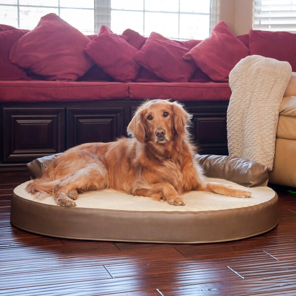 Everest Orthopedic Memory Foam Leatherette Joint Relief Bolster Dog Bed by Archie & Oscar