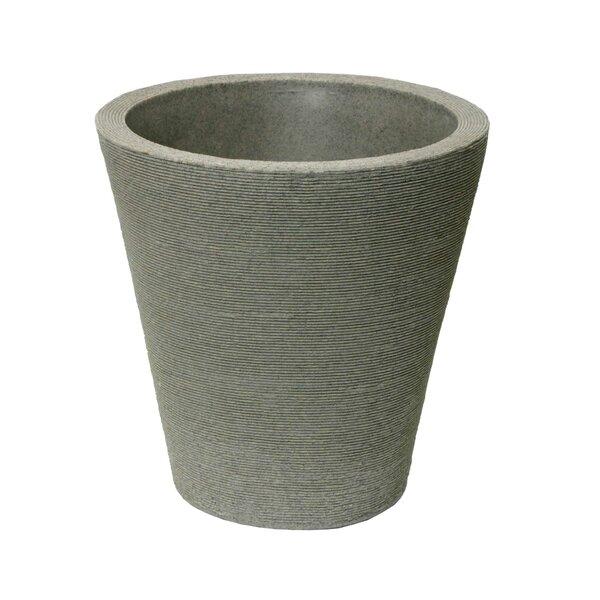 Barbara Self-Watering Resin Pot Planter by Charlton Home