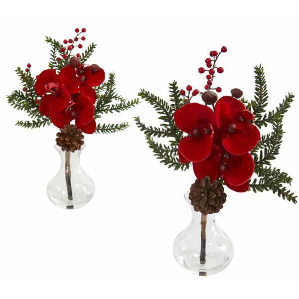 Artificial Phalaenopsis Pine and Orchid Floral Arrangement in Vase (Set of 2) by The Holiday Aisle