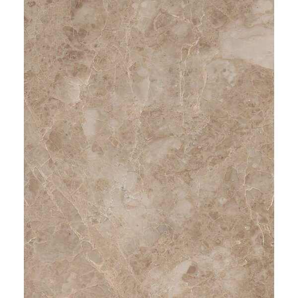 Cappuccino 18 x 18 Marble Field Tile in Beige by Seven Seas