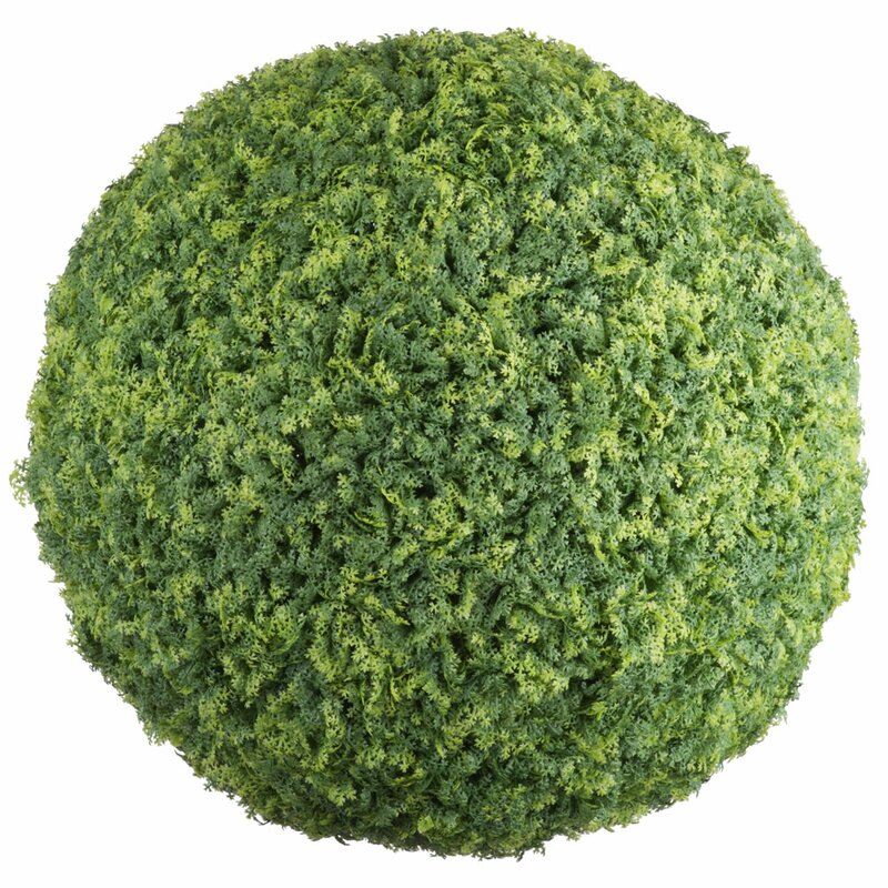 Ophelia Co Mini Leaf Ball Foliage Moss Plant Wayfair