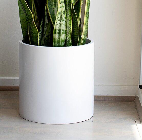 Rotteck Cylinder Fiberglass Pot Planter by Orren Ellis