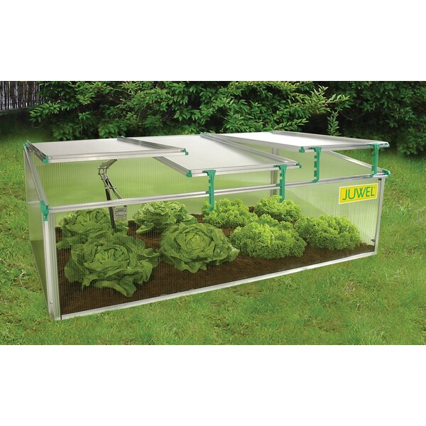 BioStar 2.6 Ft. W x 4.92 Ft. D Cold-Frame Greenhouse by Juwel